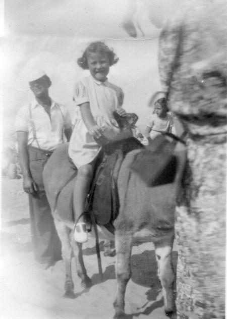 Marilyn Donkey 1