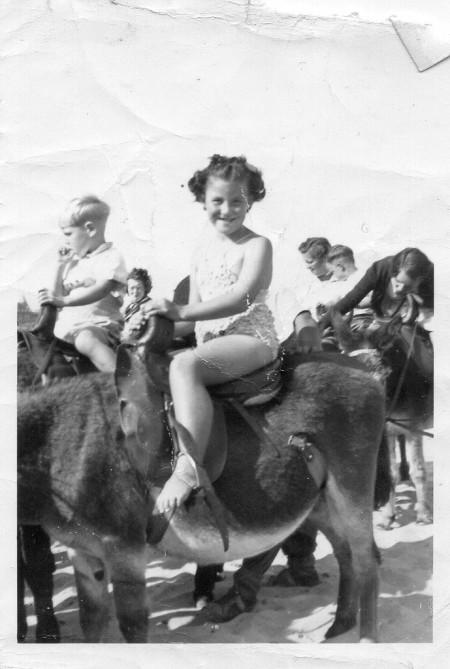 Marilyn Donkey 2