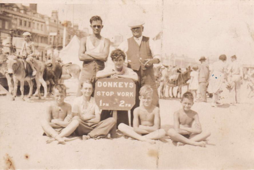 donkeys1aa
